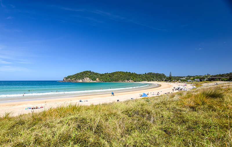 Consultant ENT Surgeon (Head & Neck or Rhinology) - Pack up the paddleboard & bring the kids to subtropical Northland