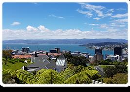 GP Job, Wellington - North Island