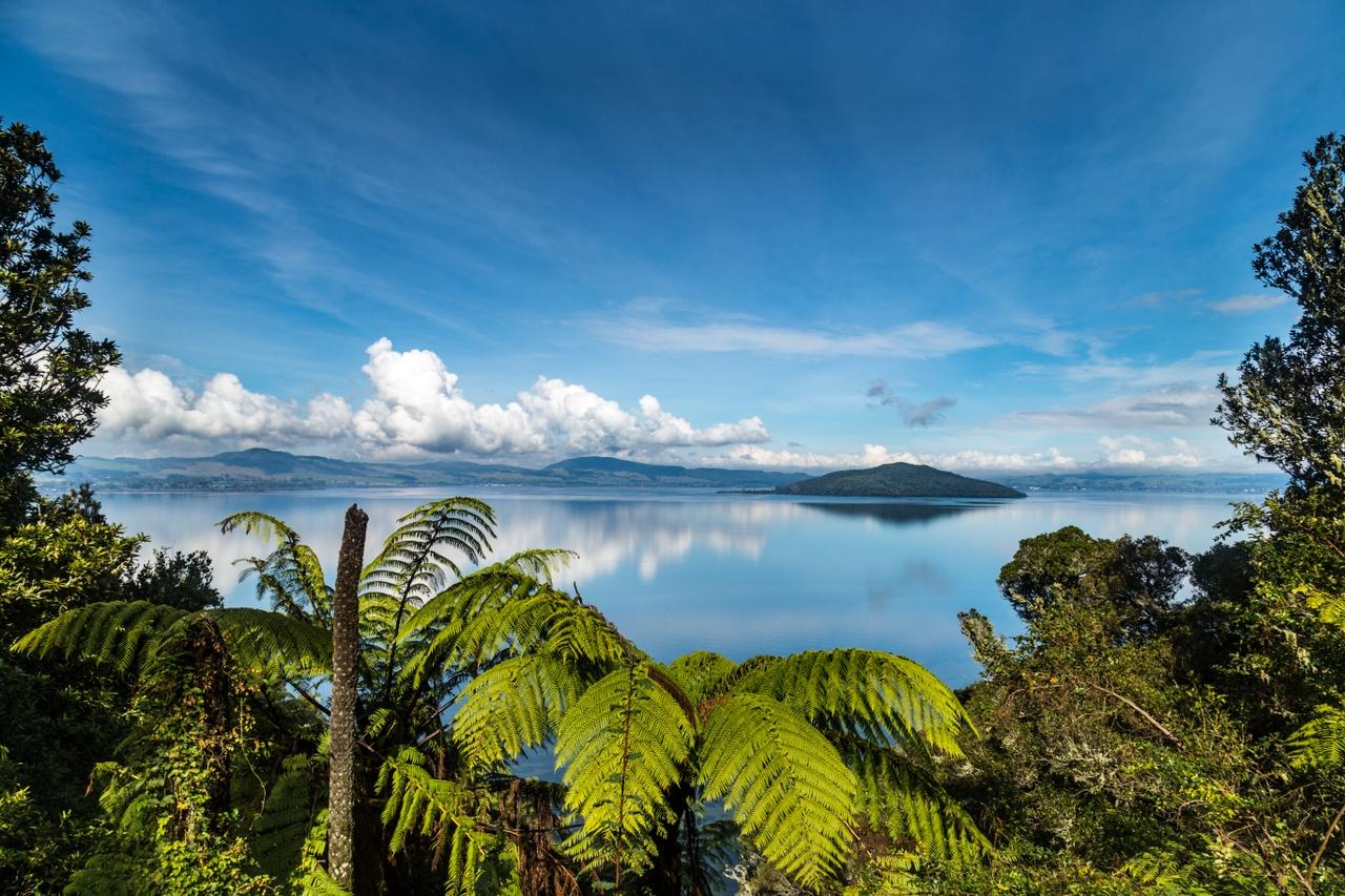 Consultant Psychiatrist (Addiction Medicine) - Rotorua, Central North Island