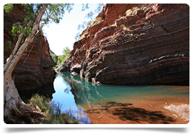 GP (DWS), Western Australia; $20,000 relocation, private billing occupational medicine $$$