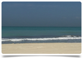 Photo by Kate McCombe - Beach at Saadiyat