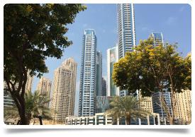 Consultant Laparoscopic Surgeon - Dubai