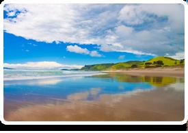 Surgery Registrar - North Island, New Zealand