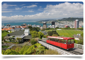 Opportunities for Doctors in New Zealand